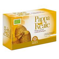 PAPPA REALE BIO 14BUST OS